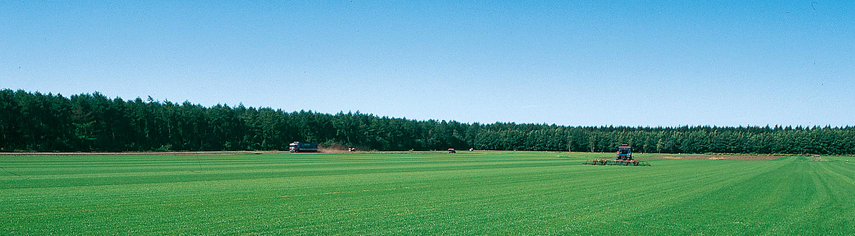 grasvelden-drouwen